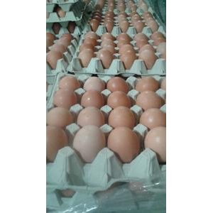 """Vajcia nebalené """"XL"""" Maiwald"""